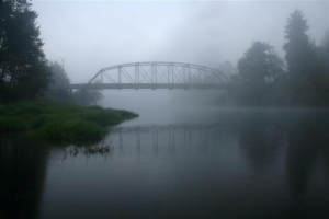 Tolt Bridge Fog - Product Image