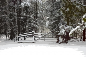 Snowy Gate - Product Image