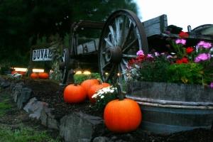 Pumpkin Wagon - Product Image