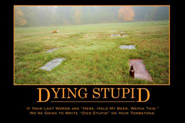 Dying Stupid 30x20 print - Product Image